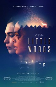 Little Woods izle