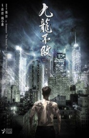 The Invincible Dragon HD izle